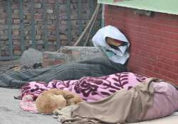 intense cold dense fog prevails in north india 10 killed