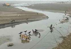 30 bodies found in canal in unnao