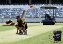 curator says plenty of bounce in waca pitch