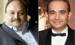 PNB fraud: 'Passports of Nirav Modi, Mehul Choksi revoked'