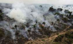 Amazon Rainforest is burning