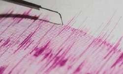 4.3 magnitude earthquake hits Nicobar Islands