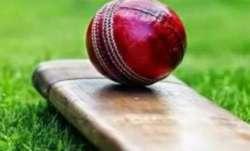 12-year-old dead as flying 'cricket' bat hits head