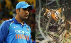 Dhoni on Friday posted an image of a tiger