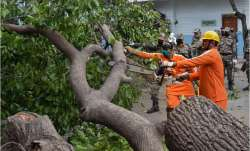 Cyclone Amphan: Water supply restored, Haldia units normalise operations