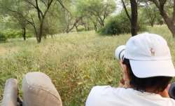 Randeep Hooda's dream of sighting a leopard in the wild comes true