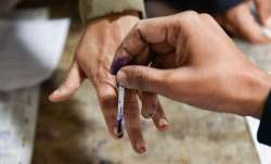 DDC Polls: Phases, voting dates, schedule - all you need to know