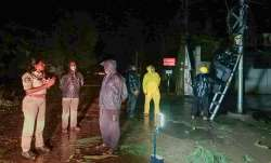 Police personnel and locals at a site after a tree fell