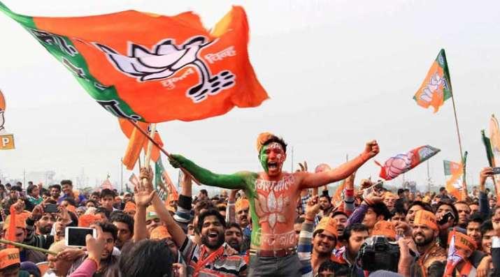Lok Sabha elections 2019, BJP